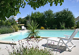Family gite in Vendee with fenced pool